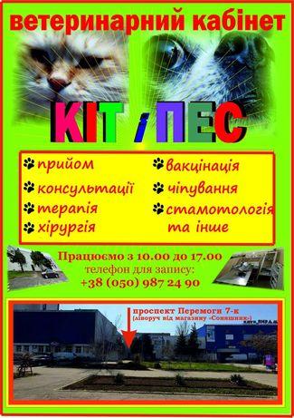 Ветеринар,Ветеринарный врач