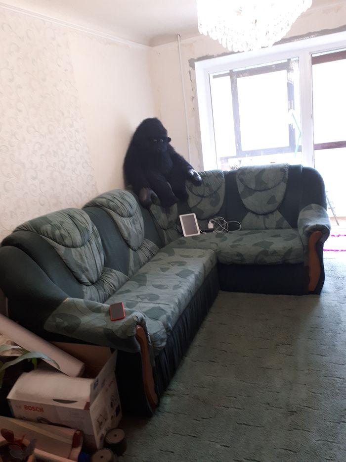 Диван угловой Луганск - изображение 1