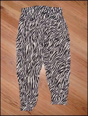 Baggy zebra r.134/146