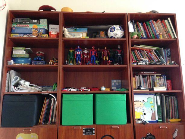Conjunto de secretária e estante