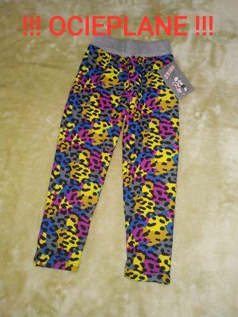 Ocieplane legginsy 92/98 nowe, centki panterka kolorowe spodnie