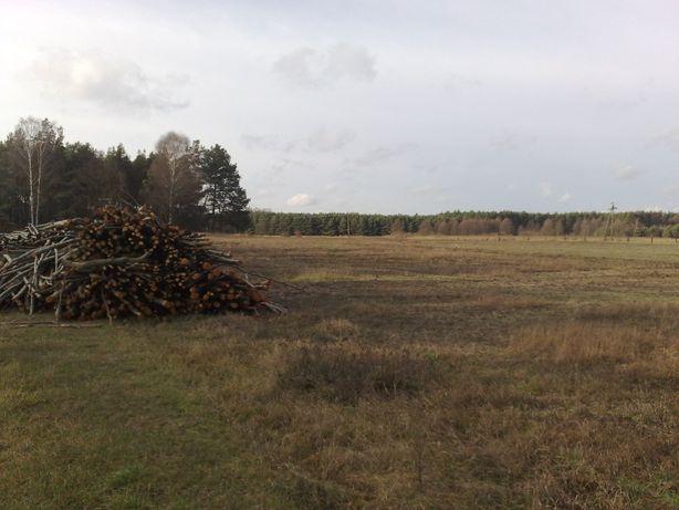 Działka rolna 15800 m2 Szarki min 30zł/m2