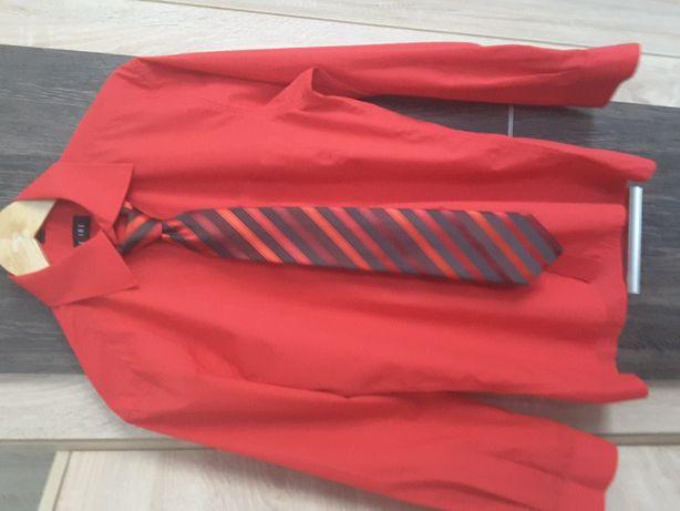 Koszula+krawat