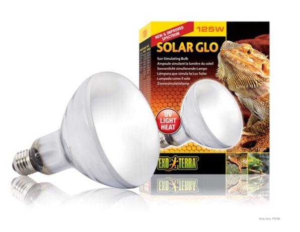 Exo Terra Żarówka Solar Glo 125W - Małe ZOO Płaskowickiej