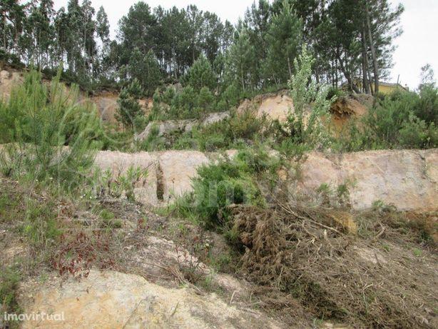 Terreno em Ourém