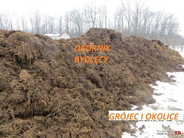 Obornik Bydlęcy // Kora Trociny pod Borówkę