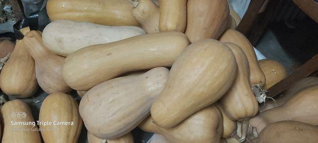 Продам гарбузы (тыква)