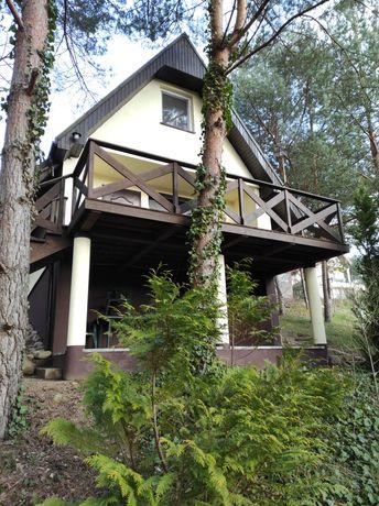 Domek letniskowy na wynajem/ apartament w lesie, noclegi Pałuki, Żnin