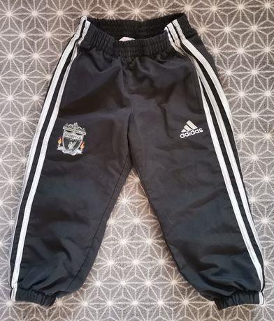 Spodnie dresowe Adidas dresy LFC Liverpool 2-3 lata piłka nożna 98