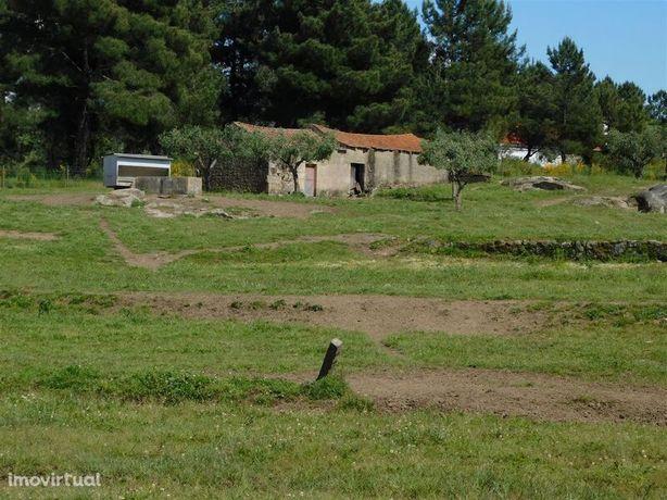 Terreno Agrícola Atalaia do Campo Fundão