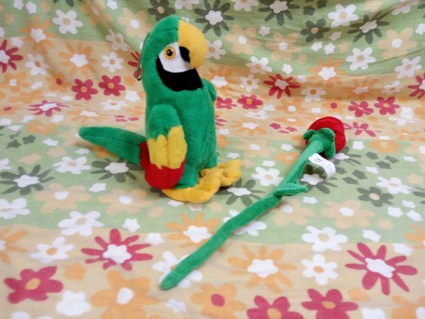 papuga gadająca zabawki jak na zdjęciu