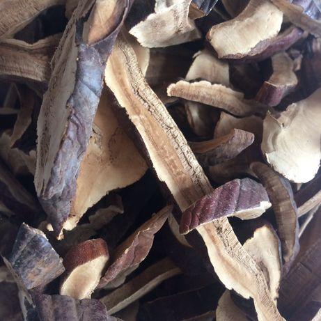 Линджи, гриб рейши, ganodarma lucidum, гриб бессмертия
