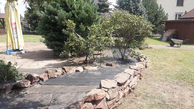 Pielęgnacja ogrodu Naprawy Prace porządkowe Trawniki Ścieżki ogrodowe