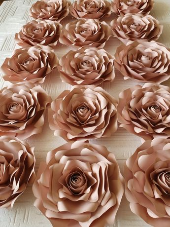 Róże Chanel 23 cm