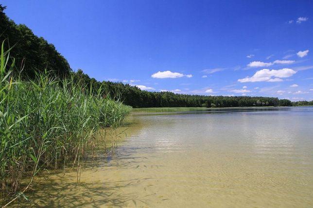 2.2 ha nad jeziorem Dręsto pow. augustowski linia brzegowa