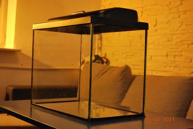 Akwarium Diversa z osprzętem, 50x30cm