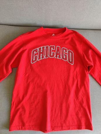 Longsleeve/bluza Chicago Bulls Adidas rozm. L