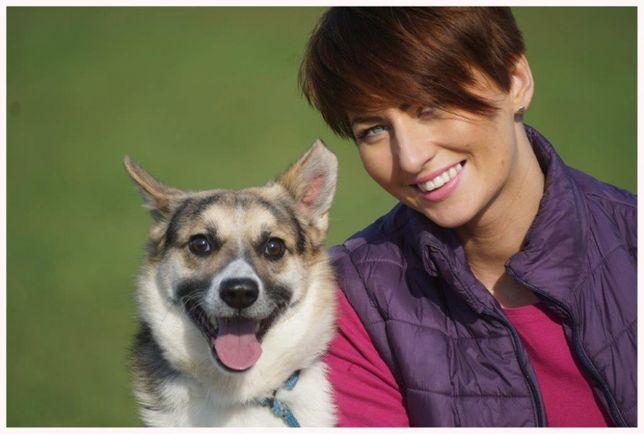 Sental - uroczy, przyjacielski psiaczek szuka rodziny