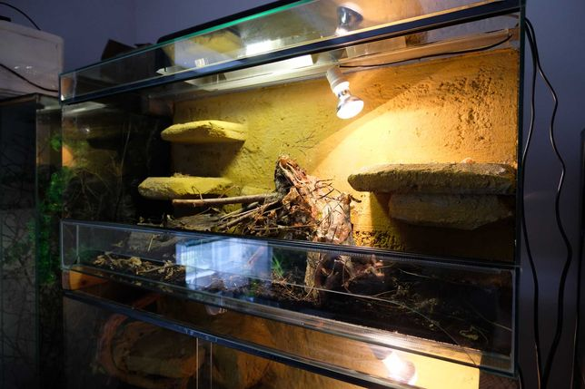Terrarium 100x50x40 cm Jaszczurka agama gekon kameleon wąż zbożowy