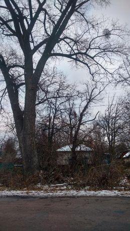 Ветхий дом 75 км от Киева