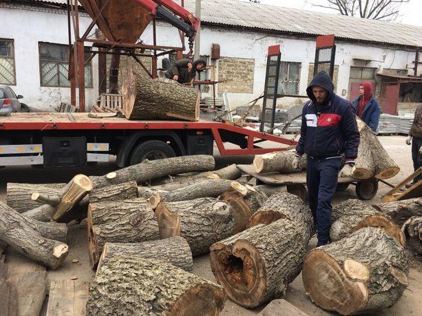 Производим спил деревьев БЕСПЛАТНО диаметр ствола от 45 см