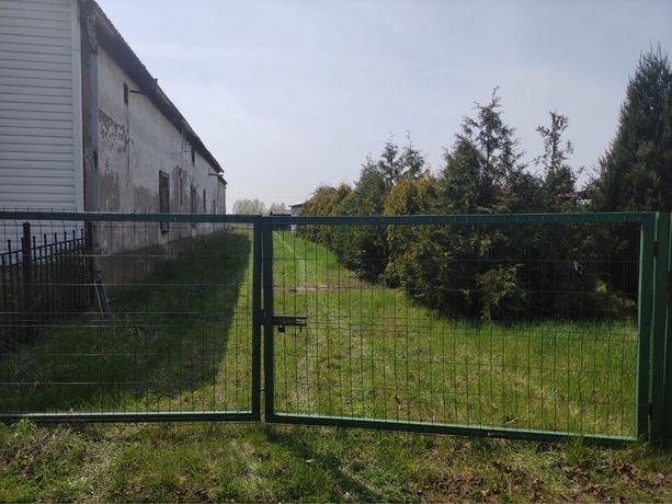 Działka budowlano rolna Dobrzyń gmina Lubsza