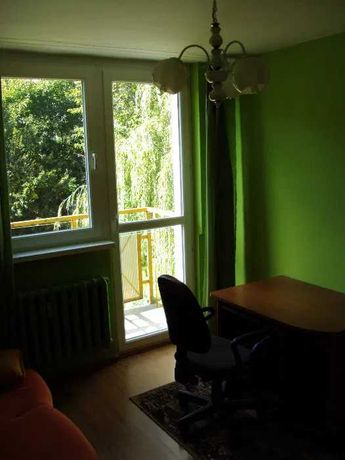 Toruń ul. Bema, blisko uczelnia, mieszkanie 3 pokoje, od 4 lipca
