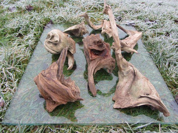 Korzeń do akwarium, terrarium, bonsai, ozdoba. dekoracja GRATIS WYSŁKA